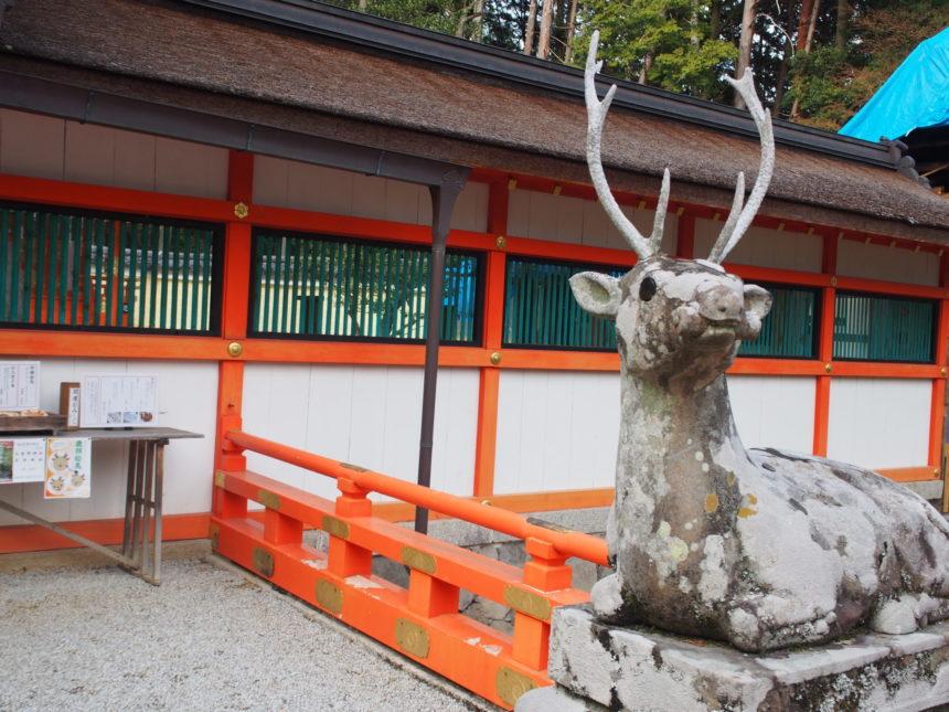 大原野神社の狛鹿