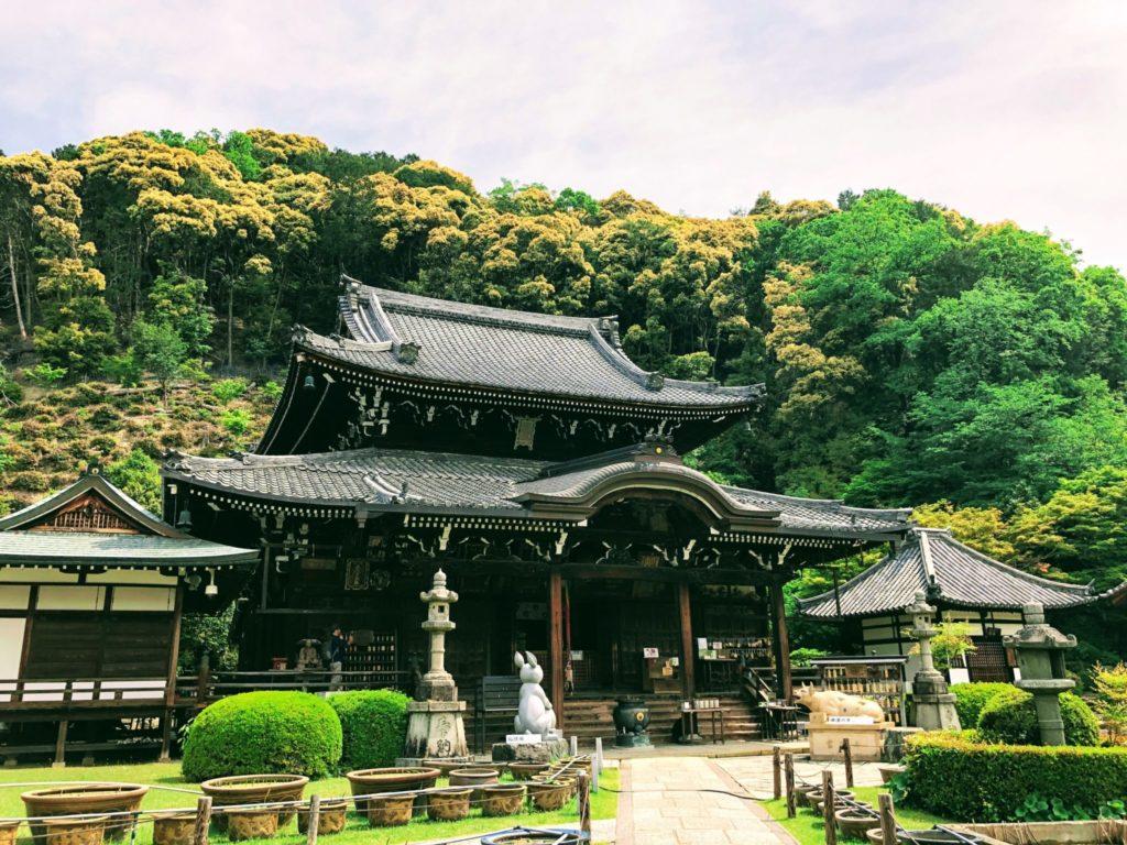 三室戸寺のご本堂