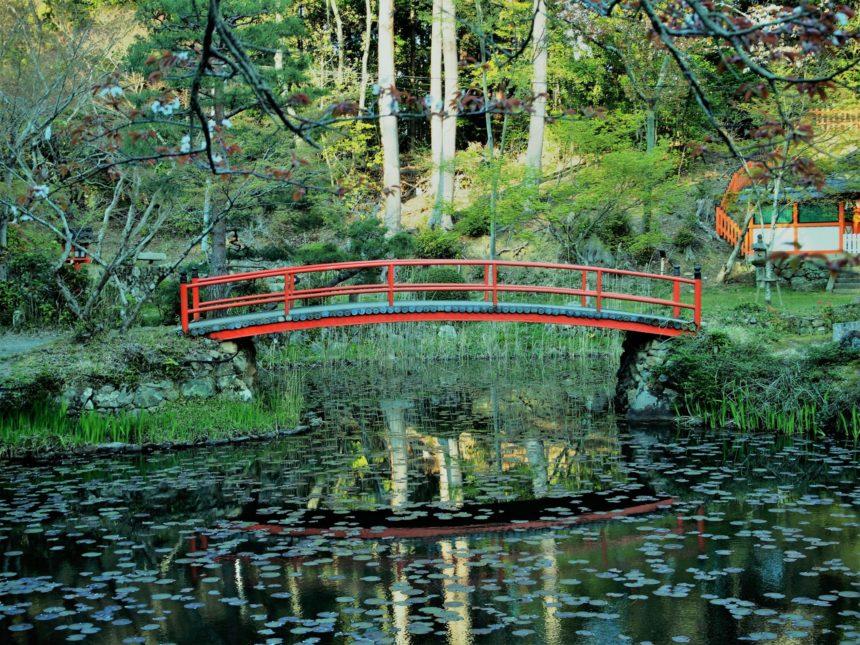 モネの絵画の様な鯉沢の池にかかる橋