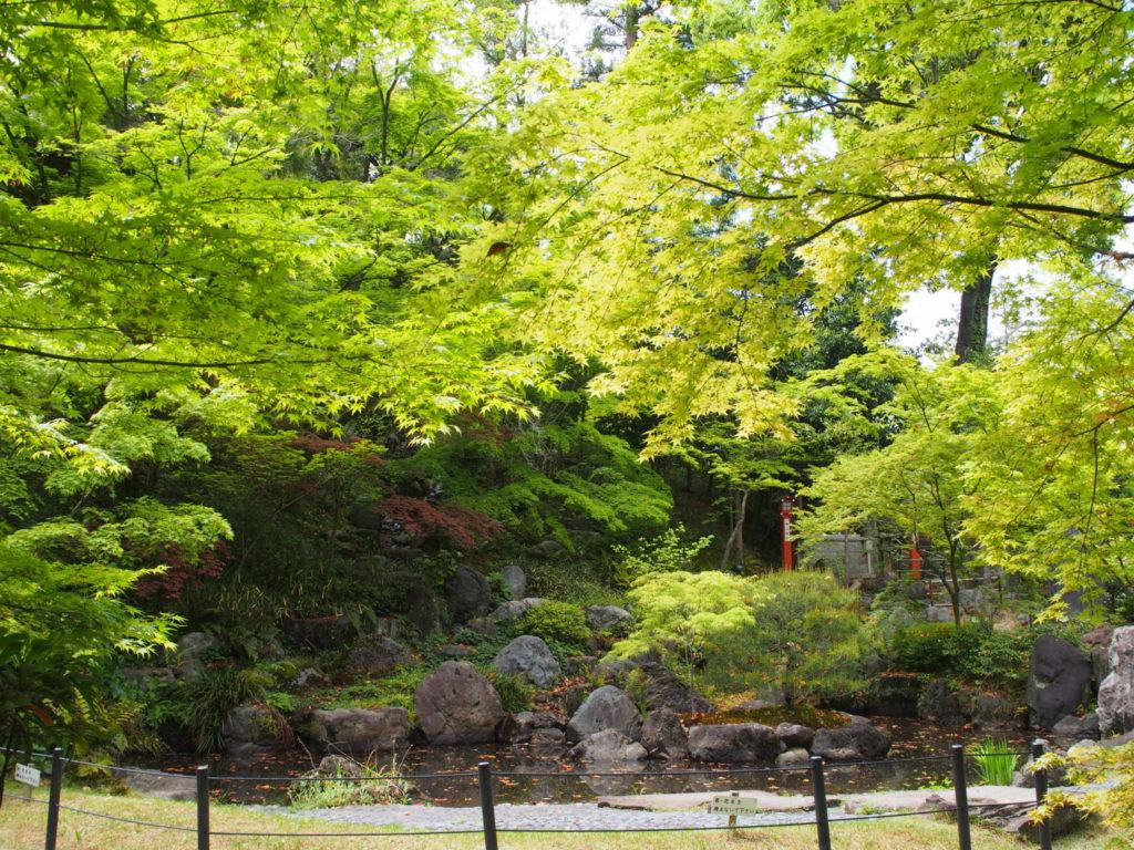 青もみじが美しい庭園