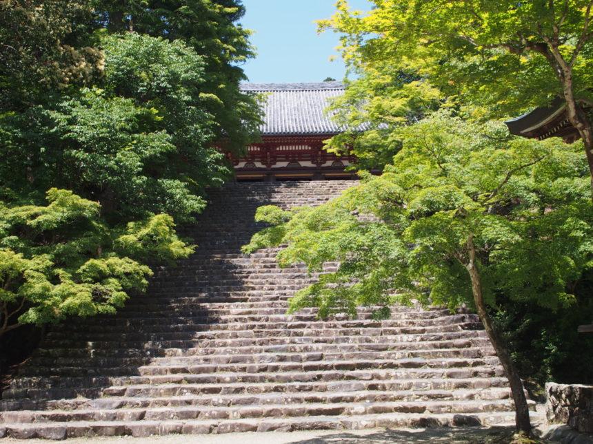 金堂前の階段
