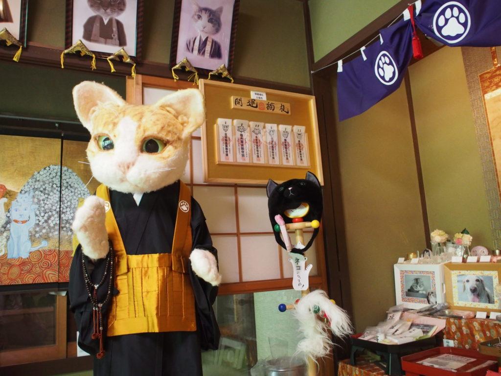 猫住職??