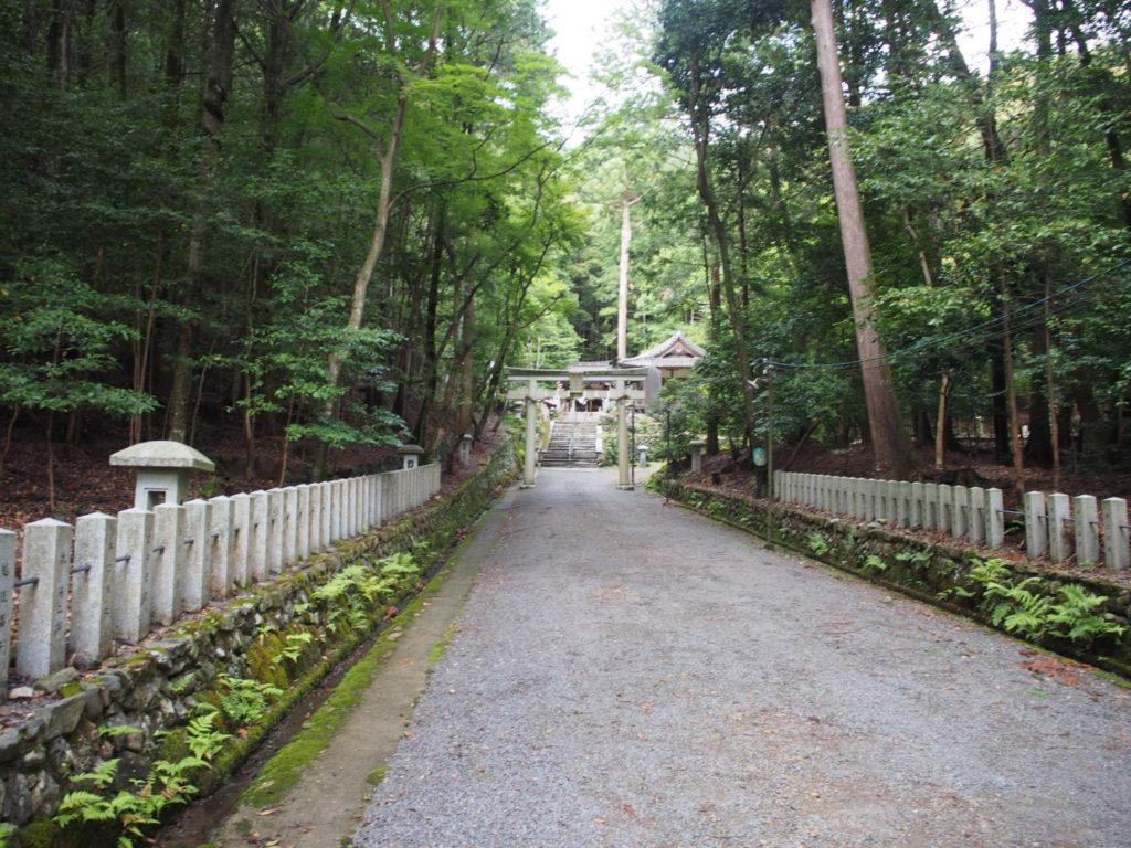 崇道神社の長い参道