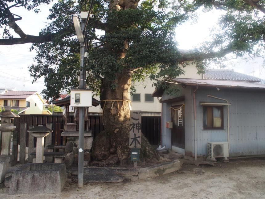 櫟谷七野神社の社務所