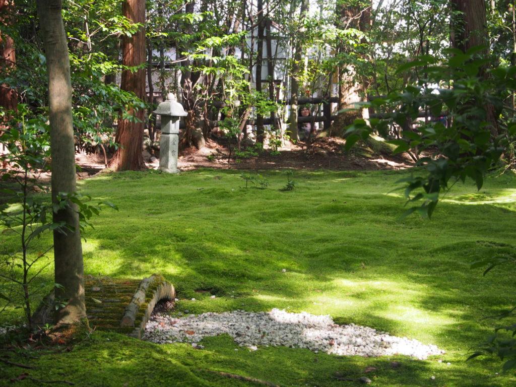 野宮神社の苔庭