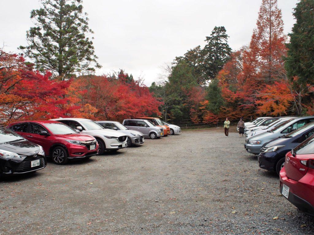 駐車場はとても広いです