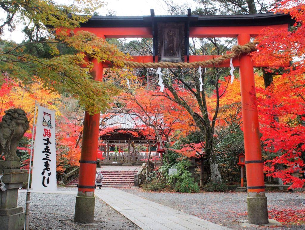 鍬山神社の鳥居