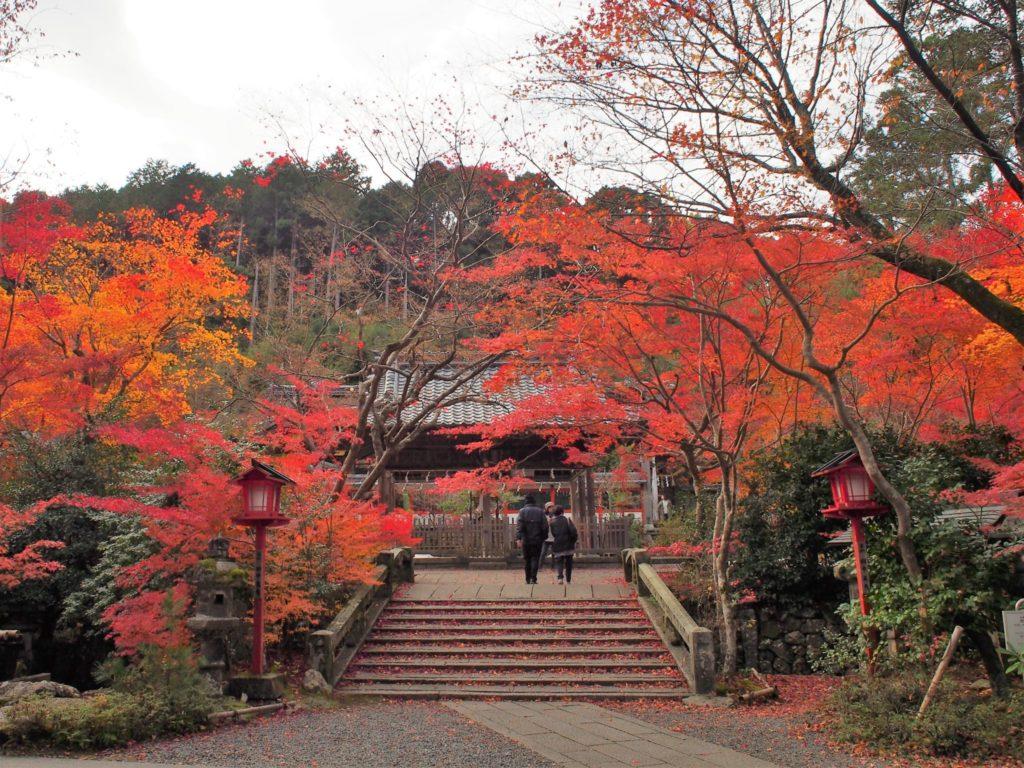 鍬山神社の拝殿