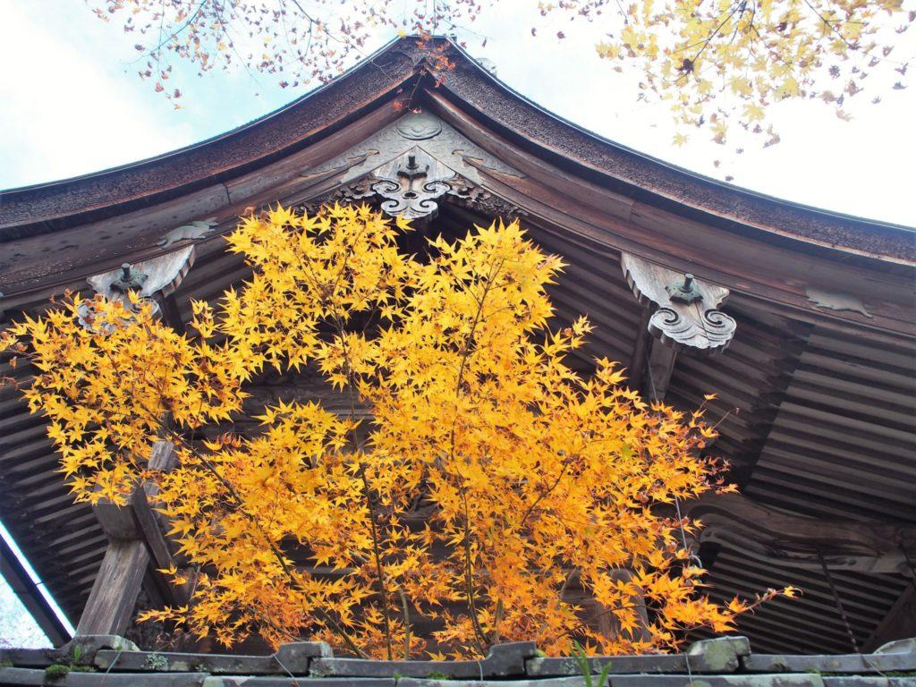 鍬山宮の横にまわると屋根の部分にうさぎ