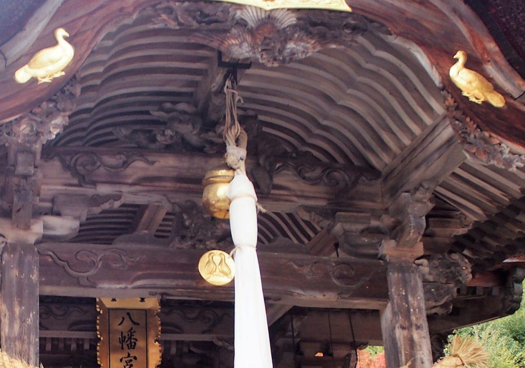 八幡宮のお使い鳩
