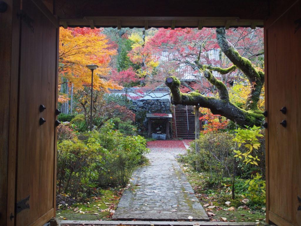 山門から見た神蔵寺境内の美しい様子