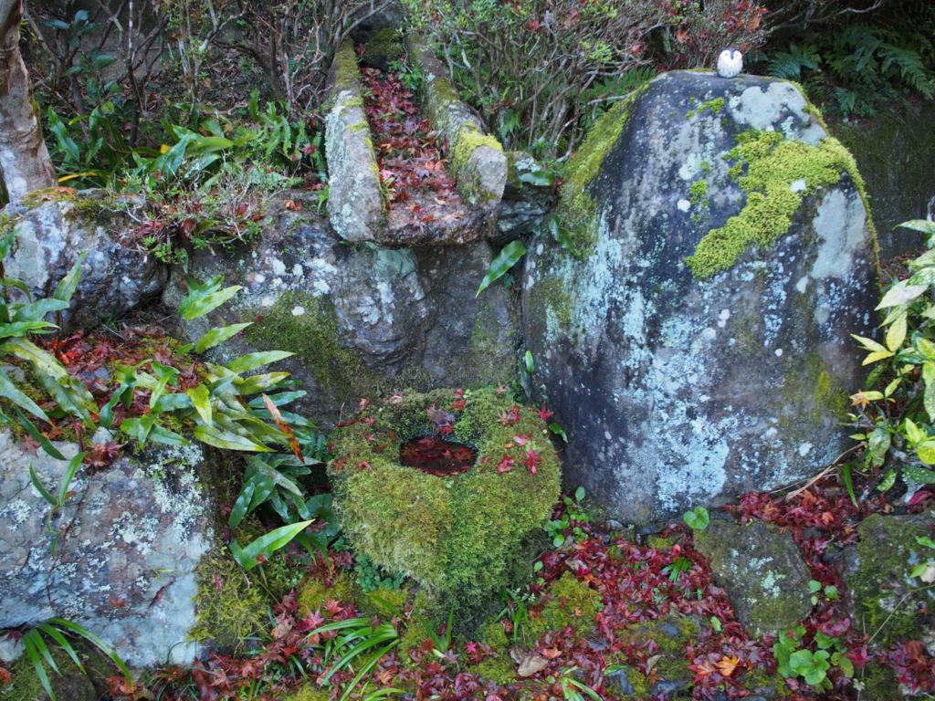 苔に覆われた鉢と紅葉とフクロウ