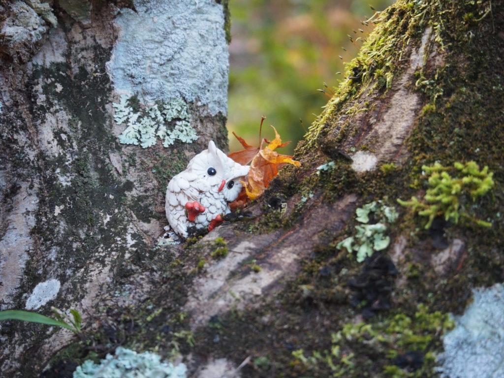 木の枝でもみじを枕に寝転んでいる白いフクロウさん