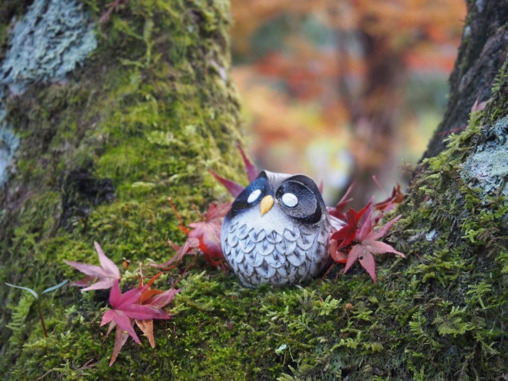 雨上がりを喜んでいるかのような、微笑むフクロウさん