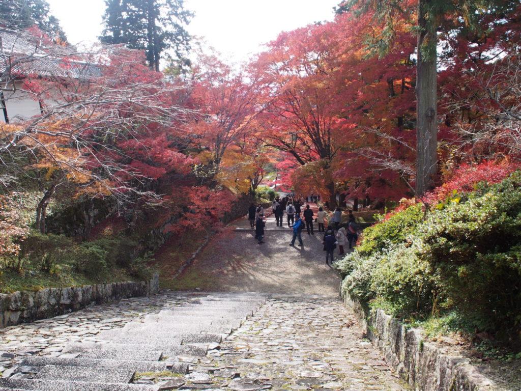 勅使門前の石階段