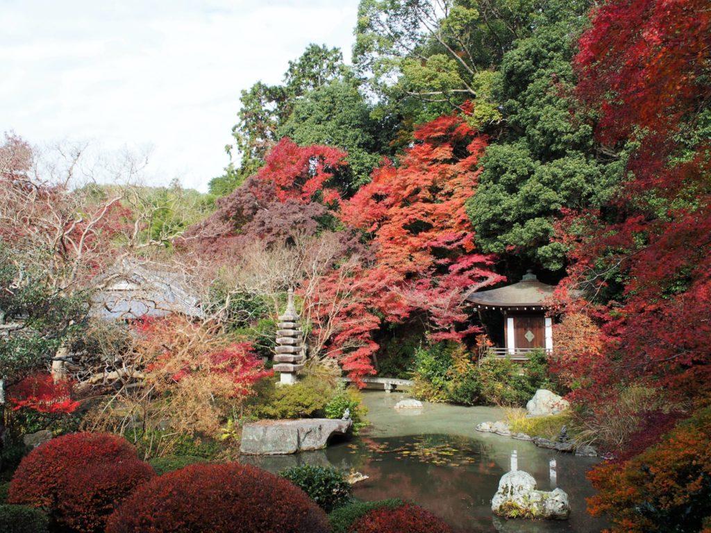 四季を楽しめる美しい庭園