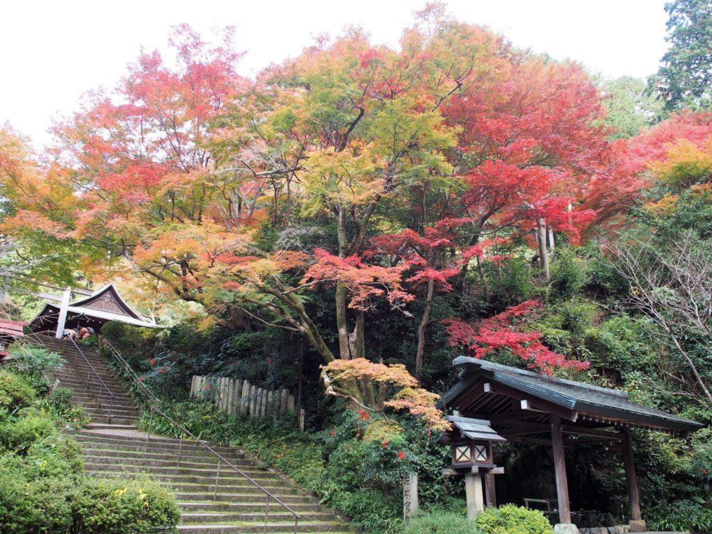 日向大神宮に続く長階段と手水舎