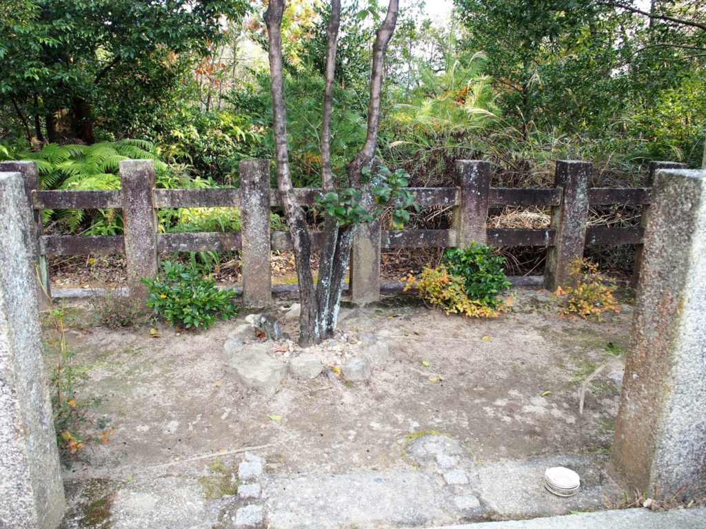 「伊勢神宮遥拝所」の中央にある3本の木