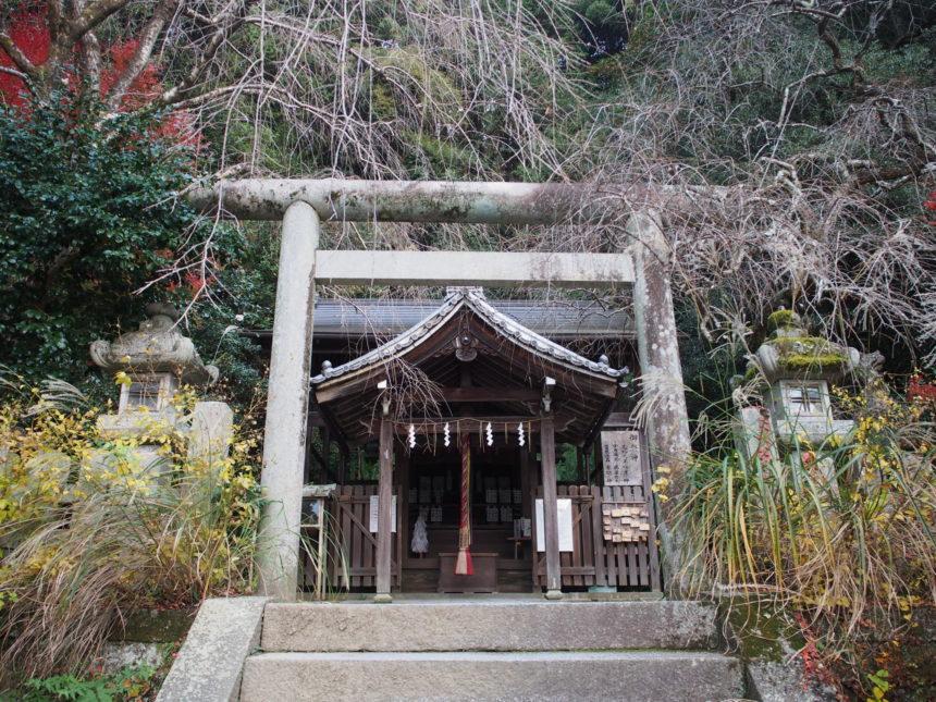 大豊神社の拝殿と本殿