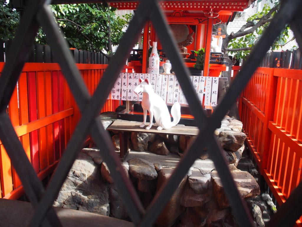 上川稲荷社内の白狐