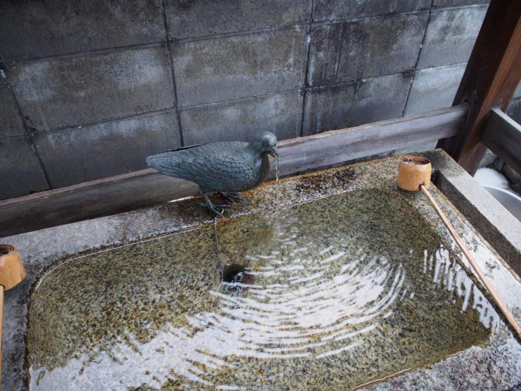首途八幡宮の手水舎の鳩