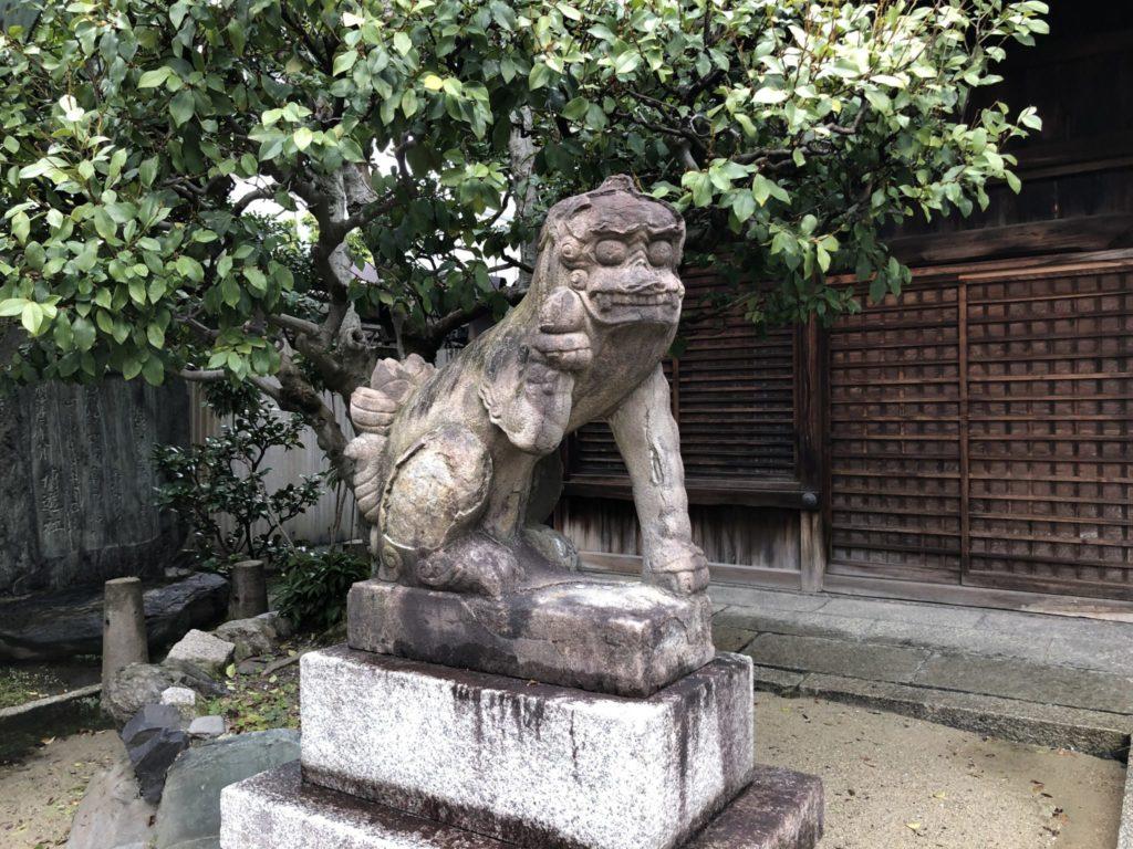 菅大臣神社の狛犬、阿吽の吽担当の狛犬