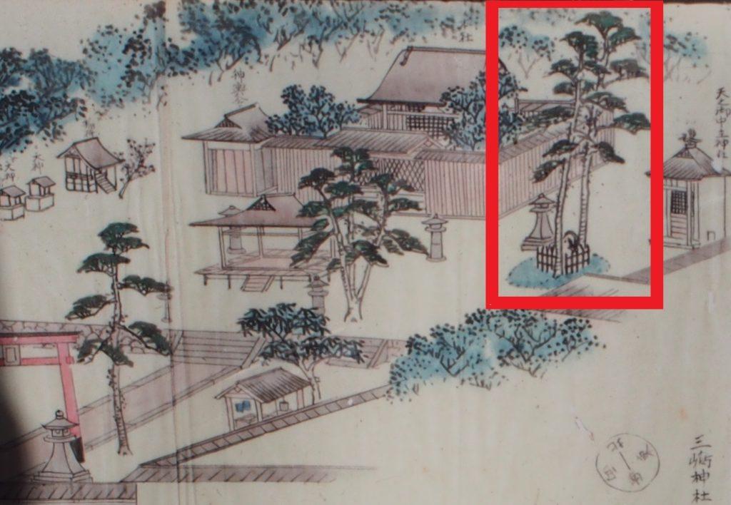 江戸時代の三嶋神社境内のご神木「相生の松」と「揺向石」が描かれている絵