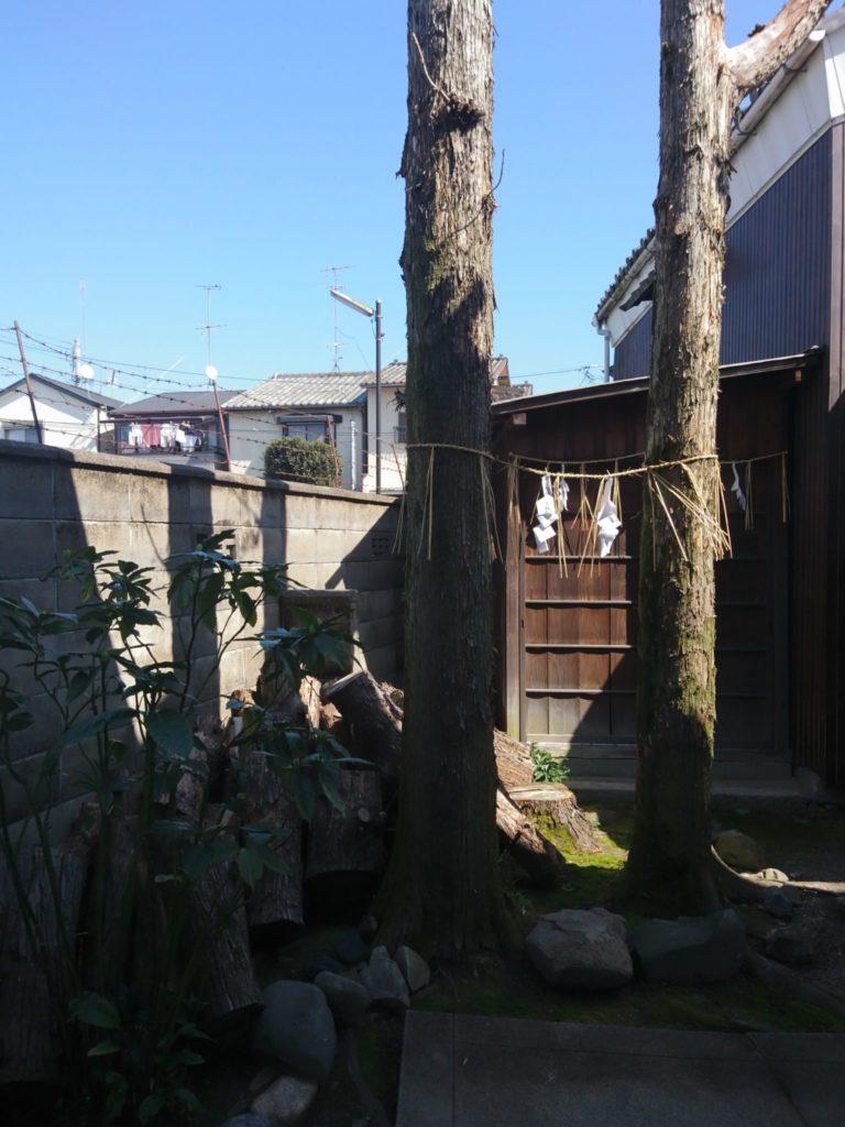 剣神社の2本の木