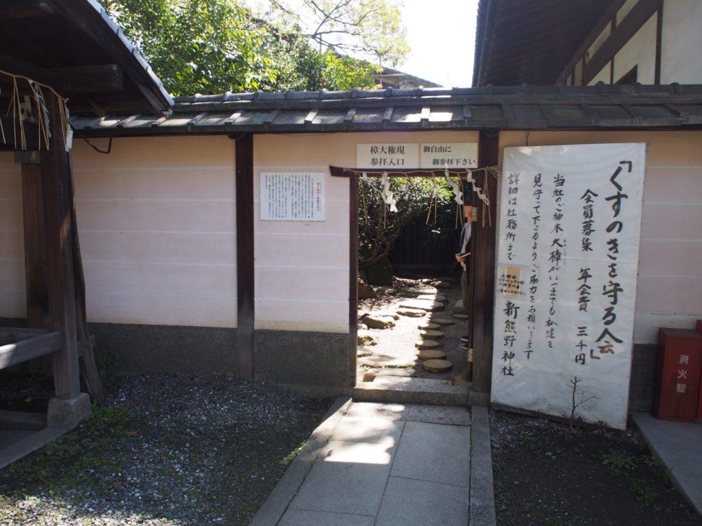 新熊野神社の樟大権現の参拝入口