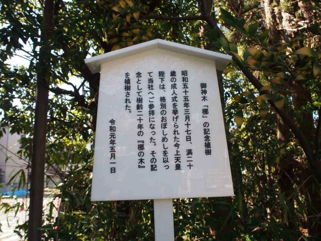 天皇陛下が植樹された椥の木前の立て看板