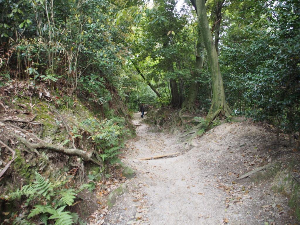 伏見神宝神社へと続く道