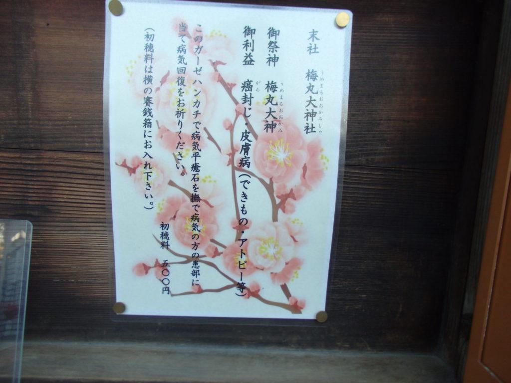 梅丸大神社の説明
