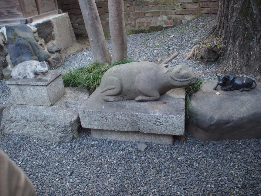 菅原院天満宮神社のご神木の近くの牛たち