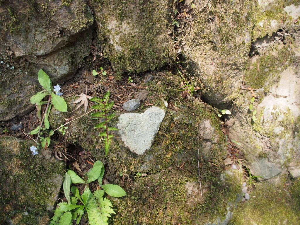 恋の道で見つけたハート