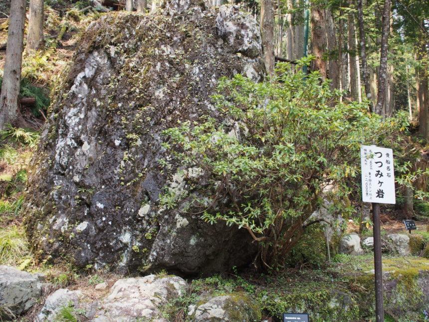 大杉並木の脇にある「つつみが岩」