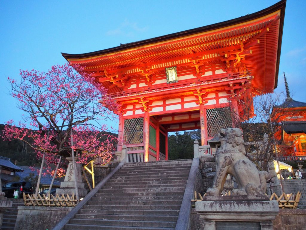 ライトアップされた清水寺の楼門
