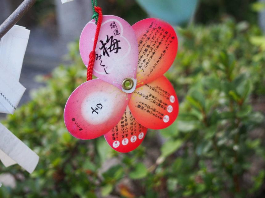 菅原院天満宮神社の梅みくじは開くと梅の花