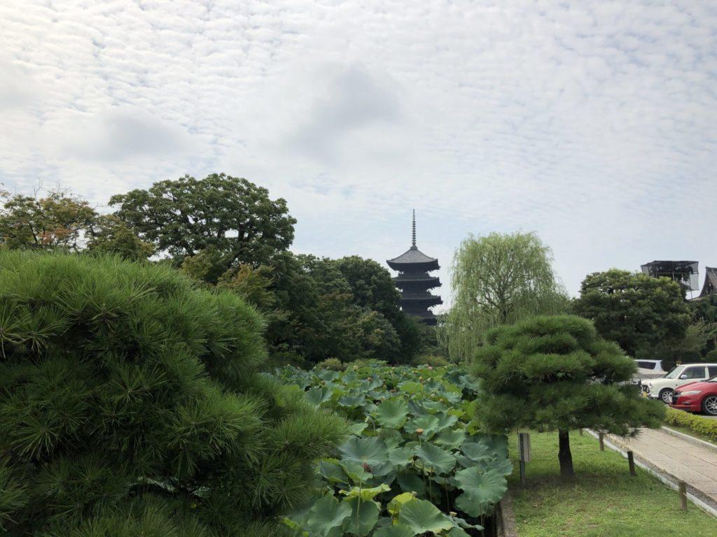 朝日を浴びた東寺の五重塔
