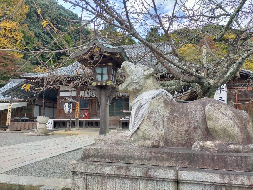 法輪寺の狛虎