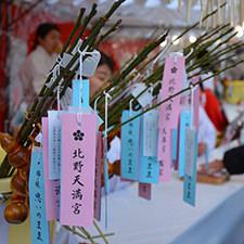 北野天満宮の新年限定授与品、招福の梅の枝「思いのまま」